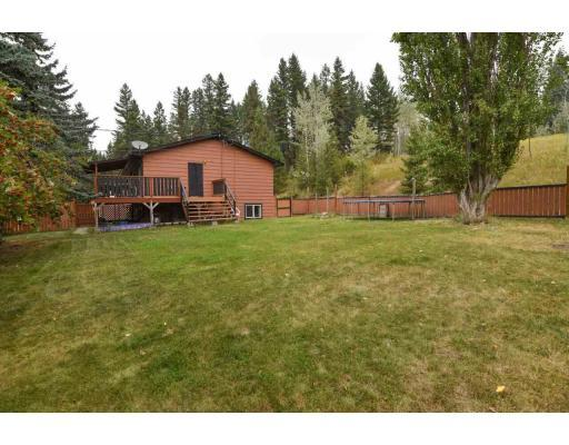 3880 N 97 (CARIBOO) HIGHWAY - Williams Lake House for sale, 4 Bedrooms (R2202169) #15